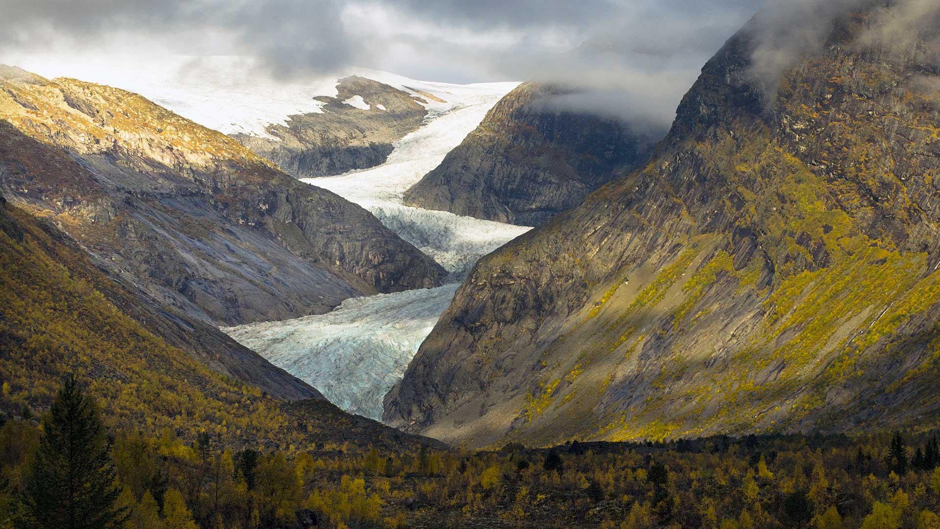 Bilde av Nigardsbreen naturreservat